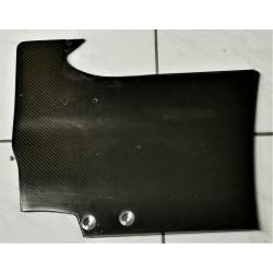 Plaque latérale d'aileron arrière RENAULT R25